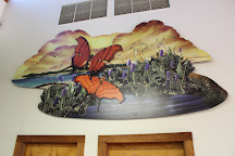 Daggerwing Nature Center, Boca Raton, United States