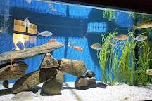 Woods Hole Science Aquarium, Woods Hole, United States