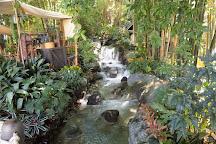Tarzan's Treehouse, Anaheim, United States