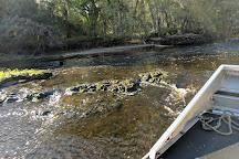 Airboat Wildlife Adventures, Sebring, United States