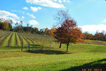 Casanel Vineyards & Winery, Leesburg, United States