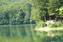 Biogradska Gora, Kolasin Municipality, Montenegro