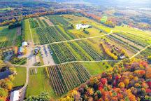 Alyson's Orchard, Walpole, United States