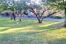 Lilianfels Park
