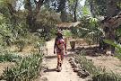 Bakau's Botanical Gardens