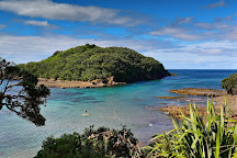 Goat Island Marine Reserve, Warkworth, New Zealand