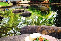 George Brown Darwin Botanic Gardens, Darwin, Australia
