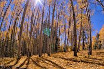 Jemez Mountain Trail, Jemez Springs, United States