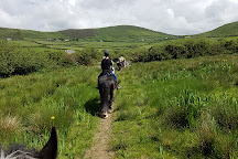 Longs horseriding and trekking centre, Ventry, Ireland