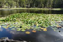 Lac de Creno, Soccia, France