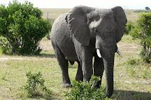 Explore Africa Safari, Nairobi, Kenya