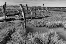 Holme Dunes National Nature Reserve, Thornham, United Kingdom