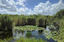 Anhinga Trail, Everglades National Park, United States