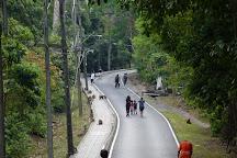 Monkey Hill, Phuket Town, Thailand