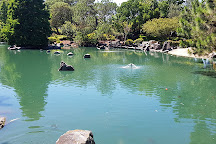 Auburn Botanic Gardens, Auburn, Australia