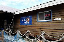 Miller's Landing, Seward, United States