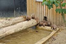 Munkholm Zoo, Balle, Denmark