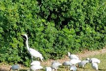 Perico Preserve, Bradenton, United States