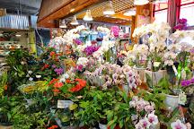 Lonsdale Quay Market, North Vancouver, Canada
