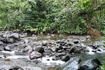 Cascade aux Ecrevisses, Parc National, Guadeloupe