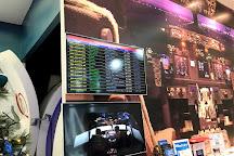 Flight Experience Flight Simulator, Singapore, Singapore