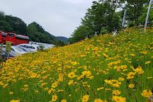 Ppuri Park, Daejeon, South Korea