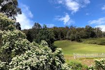 Mount Misery Walk, Huonville, Australia
