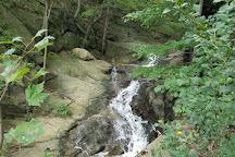 Turkey Hill Overlook Trail, Conestoga, United States