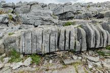 Burren National Park, Corofin, Ireland