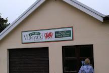 Cwm Deri Vineyard, Martletwy, United Kingdom