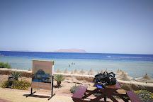 Millennium divers Sharm, Sharm El Sheikh, Egypt