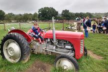 Mini Meadows Farm, Welford, United Kingdom