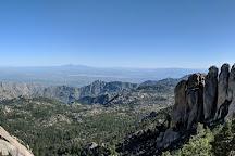 Coronado National Forest, Arizona, United States