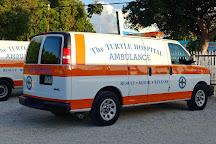 The Turtle Hospital, Marathon, United States