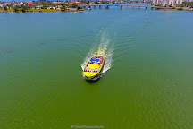 Dolphin Racer, St. Petersburg, United States
