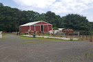 Paradise Riding Stables
