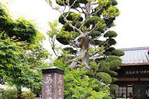 Wakihonjin Okuya, Nagiso-machi, Japan