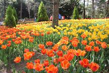 Hallim Park, Jeju, South Korea