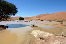 Sossusvlei, Namib-Naukluft Park, Namibia