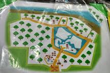 Kuala Selangor Nature Park (Taman Alam Kuala Selangor), Kuala Selangor, Malaysia