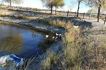 Natura Navas / Wildlife Center, Navas del Rey, Spain