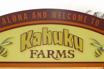 Kahuku Farms, Kahuku, United States