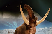 Mammuthus, Hamar, Norway