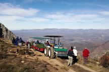Protea Farm Tractor Trips, Montagu, South Africa