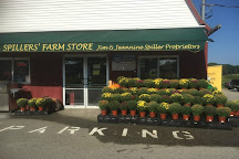 Spillers' Farm Store, Wells, United States
