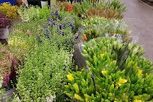 Flower Market, Los Angeles, United States