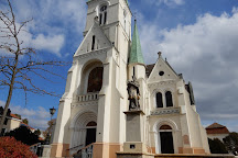 Our Lady of the Assumption Cathedral, Kaposvar, Hungary