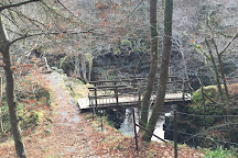 Linn of Tummel, Pitlochry, United Kingdom