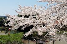 Asamizo Park, Sagamihara, Japan