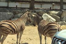 Gunma Safari Park, Tomioka, Japan